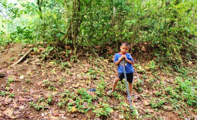 ילד מקומי בנבכי היער מעבד את האדמה
