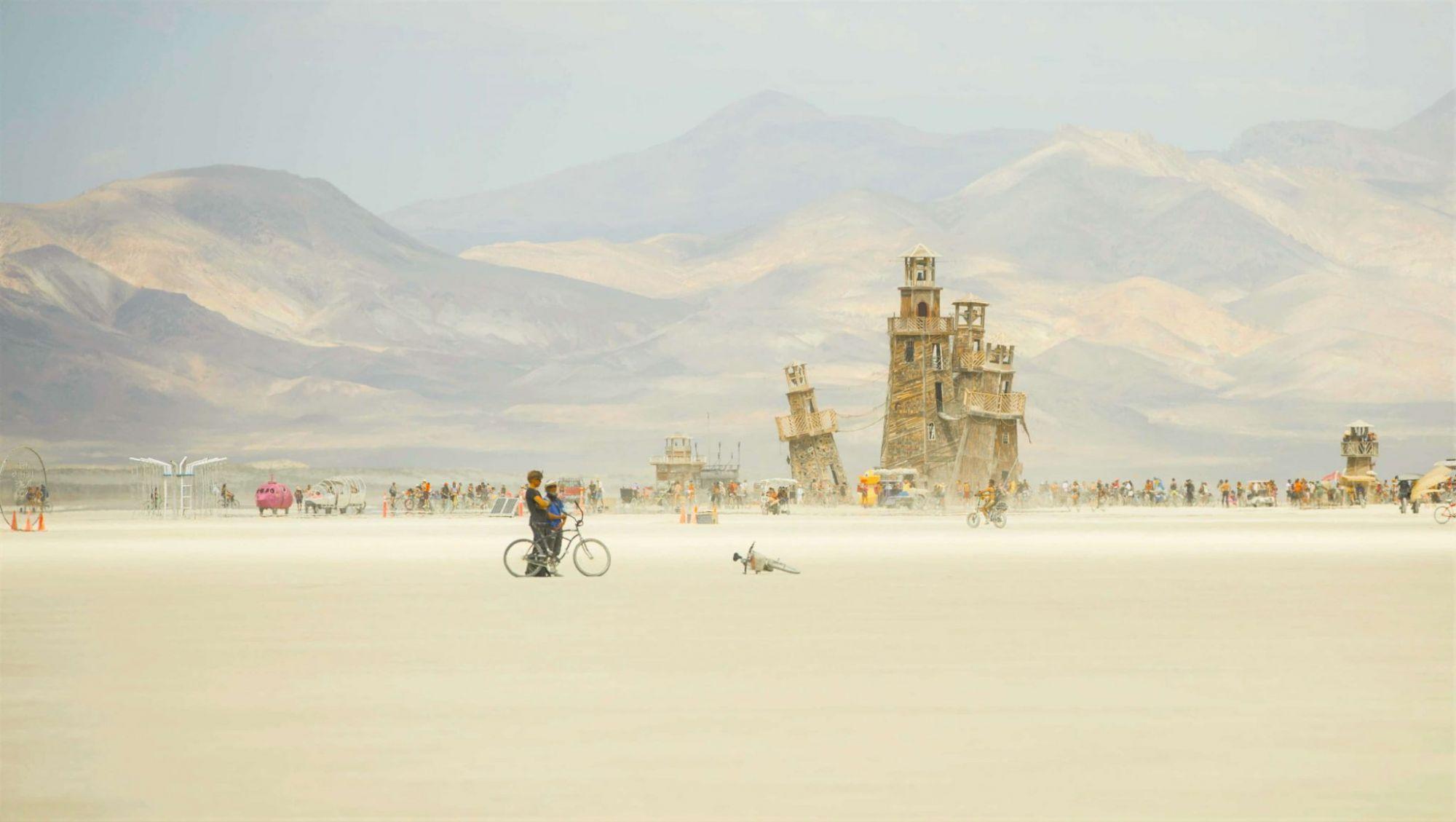אחד המייצגים המרהיבים של המדבר (צלם מוכשר - תומר פרץ)