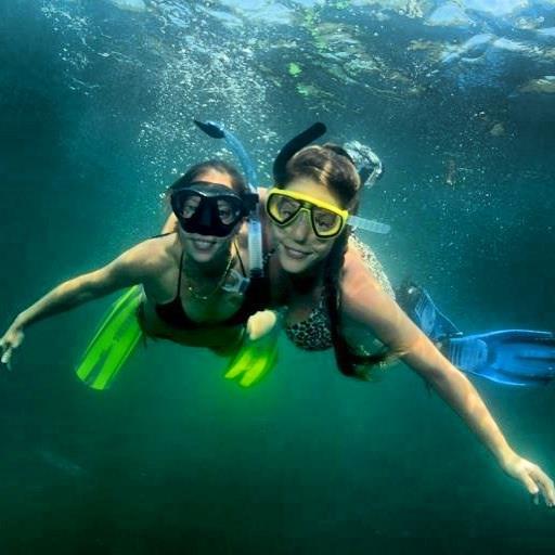 טל נברו שוחה עם מילקי ב Jellyfish Lake בפלאו