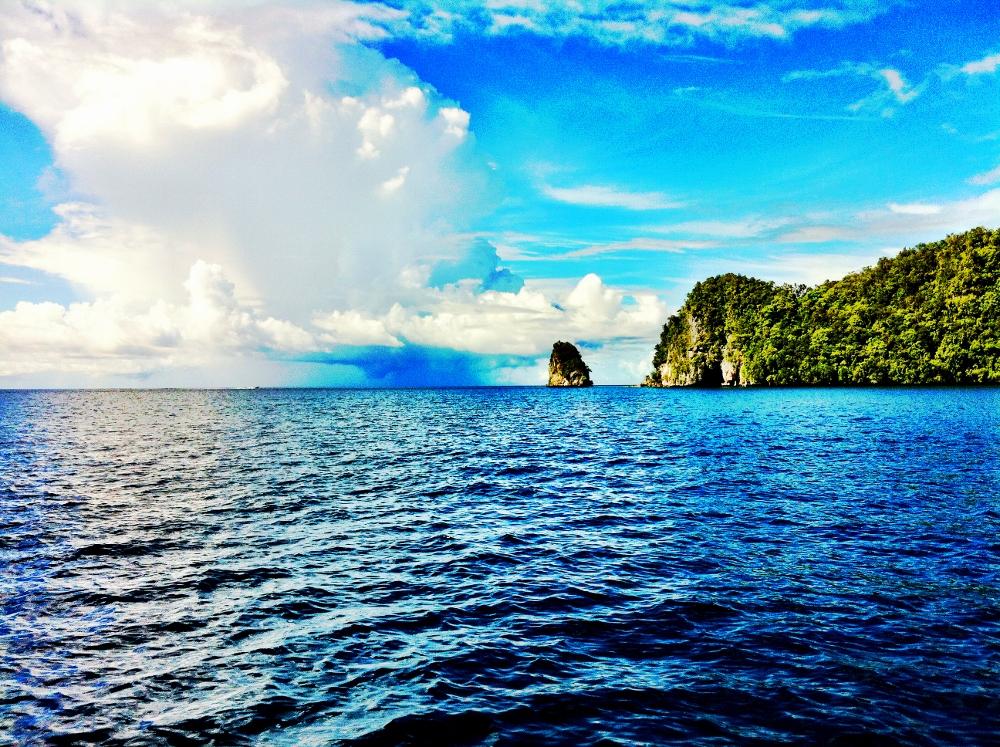 טל נברו באיי פלאו - אלפי איים מרהיבים מכוסים בירוק.