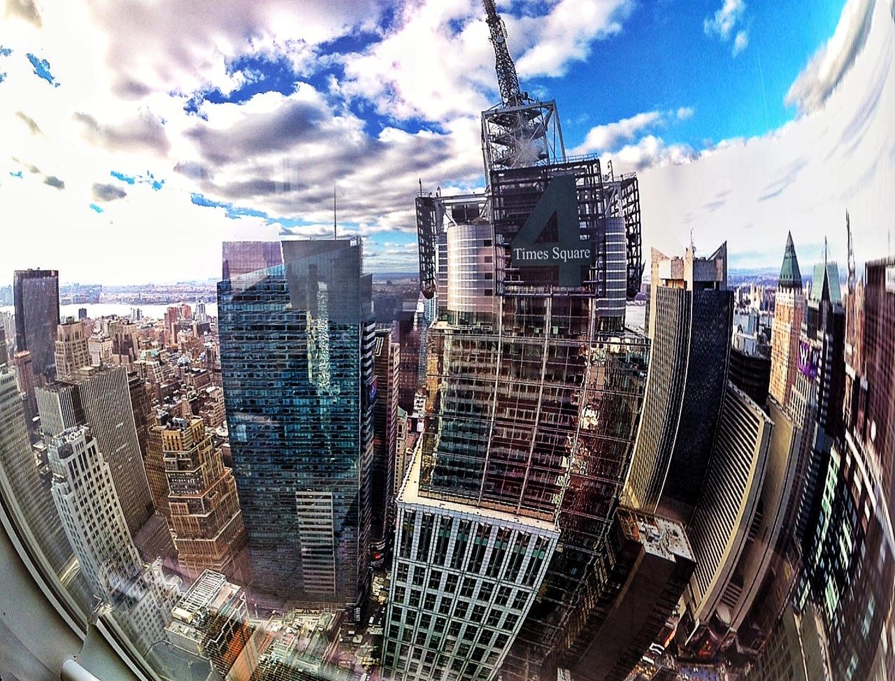 טל נברו ניו יורק