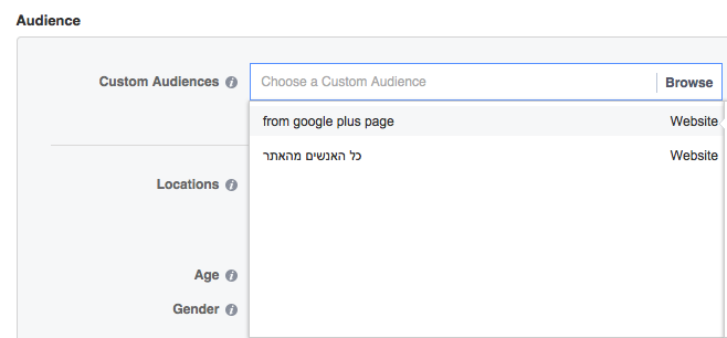 Custom Audience from your Website PIXEL